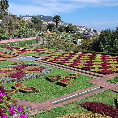 Randonnées sur l'île aux fleurs - Santana -