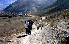 Trek de l\'Annapurna en lodge communautaire