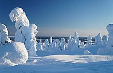 La Finlande grandeur nature, en petit groupe