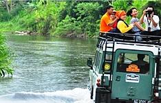Bornéo , Java , Flores, animaux et terres sauvages