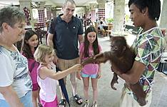 Bali, Lombok, nature et rencontre en famille