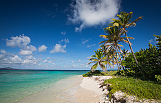 Entre terre et mer , des Salines aux Grenadines