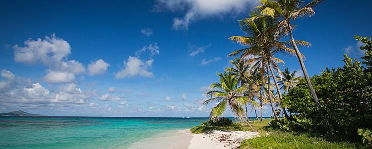 Entre terre et mer, des Salines aux Grenadines en famille