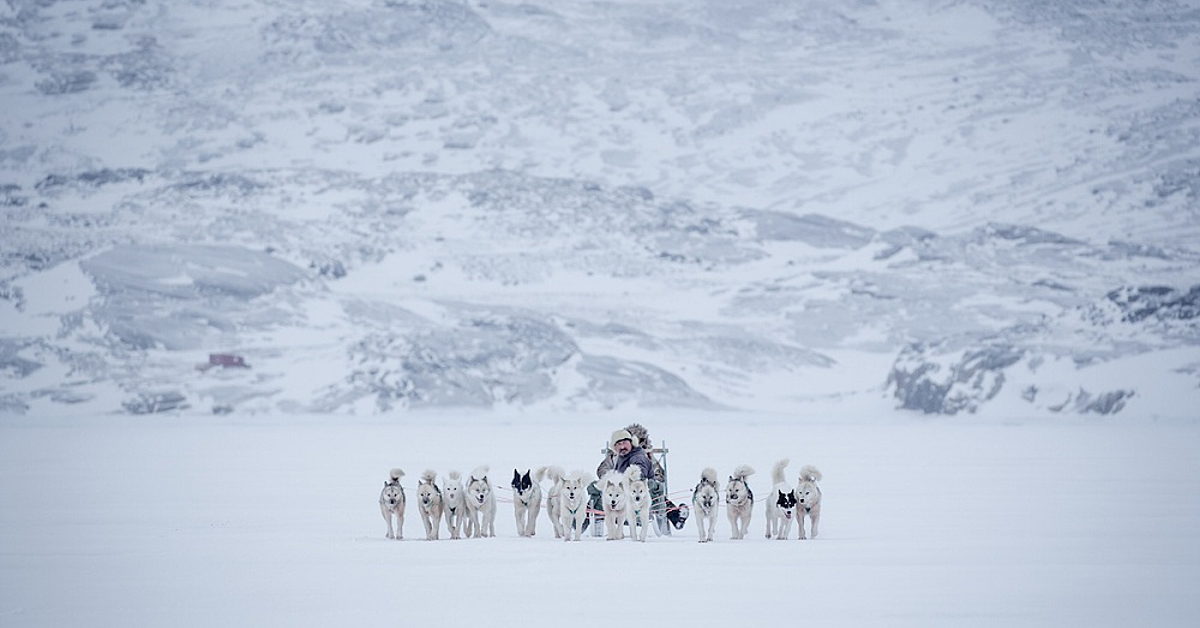 Voyage à la neige : Traîneau à chiens et immersion parmi les pêcheurs groenlandais