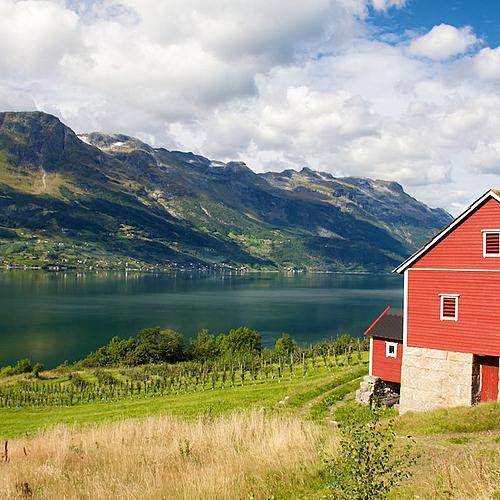 Randonnée liberté dans le Hardangerfjord -