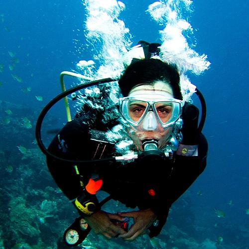Plongée aux îles de la sonde, de Bali à Komodo -