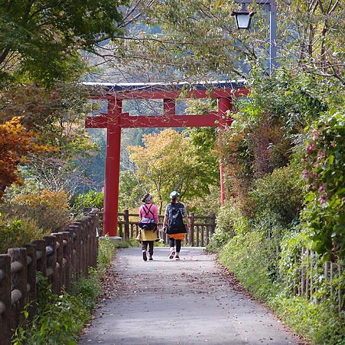 Le culte de la nature du Nord au Sud - Tokyo -