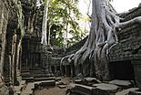 Les temples d\'Angkor
