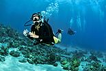 Plongée et golfe d\'Aqaba