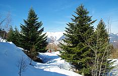 Rando haute montagne et glace en parc national