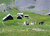 Les chalets d\'Alpage du Queyras en liberté (en gîtes)