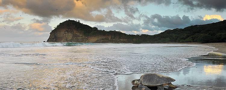 Le meraviglie del centro America, Costa Rica e Nicaragua