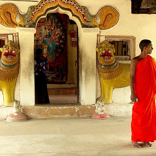 Bouddhas et pierres de lune -