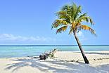 Les environs de Cancun