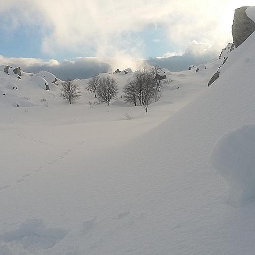 Traversée du plus haut plateau d'altitude de Corse et Cuscionu en raquettes à neige - Ajaccio -