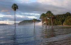 Culture Bahianaise et Amazonie