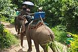 Trek Thaïlande