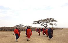 Rencontres Bushmen et Maasai