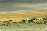 Le Parc de Ngorongoro