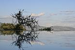 Parc et Lac Manyara
