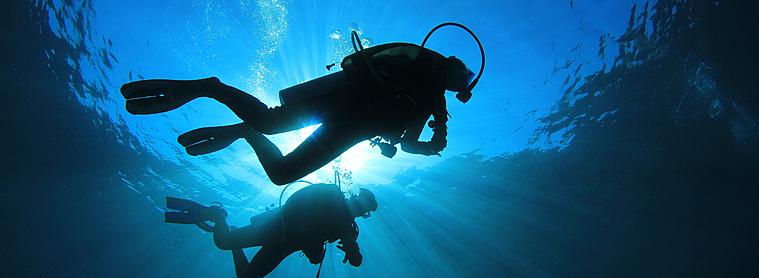 Les fonds marins Indonésiens vous feront découvrir un monde multicolore !