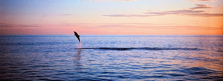 Pour vous sentir comme un poisson dans l'eau en Equateur, préparez bien votre voyage en amont du départ!