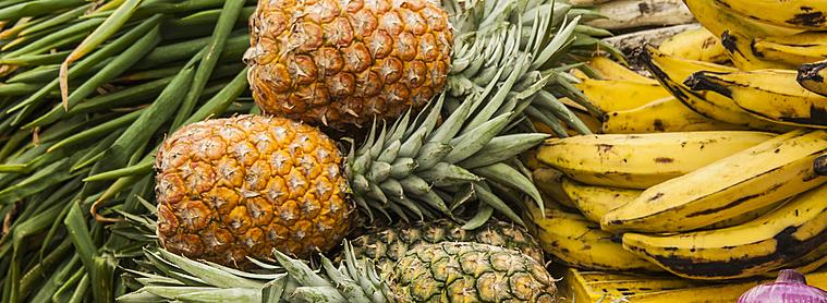 Saviez-vous que l'Equateur est le premier pays exportateur de banane depuis 1950 ?