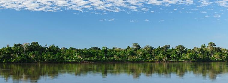 Lors de votre voyage en Equateur, partez découvrir l'Amazonie !