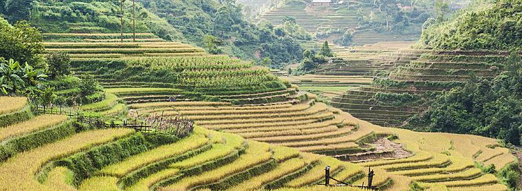Les paysages Indonésiens, envoûtant...