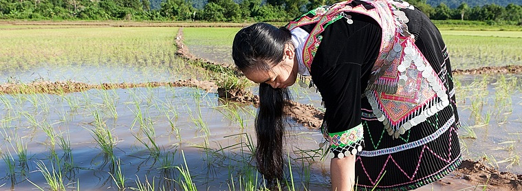 Les Hmongs, une des Minorités ethniques du Laos
