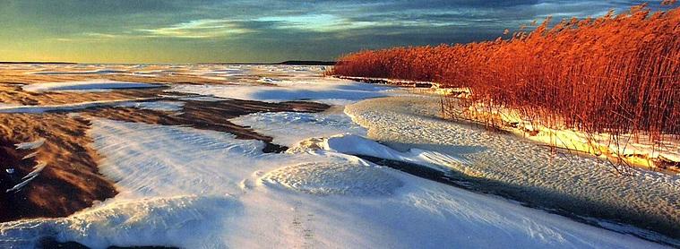 L'Estonie, un pays aux mille et une couleurs !