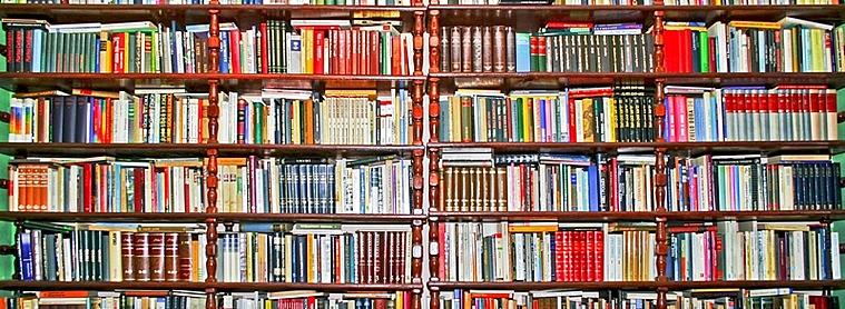 Pour votre voyage en Estonie, préparez votre voyage à travers la lecture !