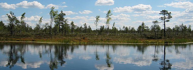 Le parc de Sooma, sauvage et parcouru de nombreux cours d'eau