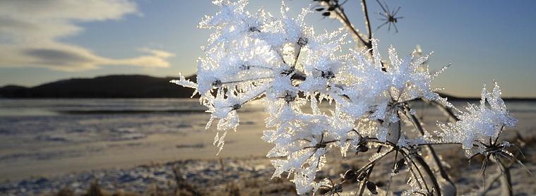 Ete ou hivers en Finlande ? A vous de choisir !