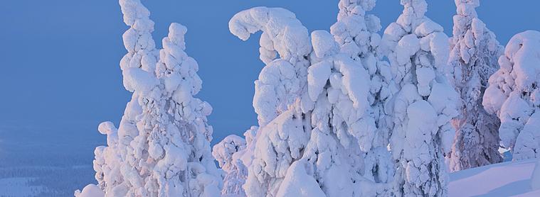 Guide pratique Finlande