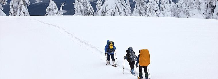 Profitez de votre voyage en Finlande pour essayer la randonnée en raquette !