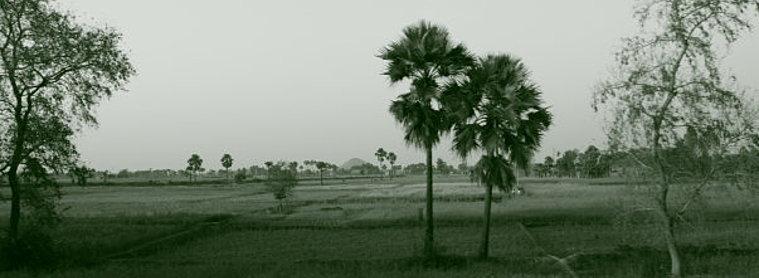 Paysage indien