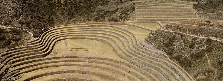Le site des cultures de Moray