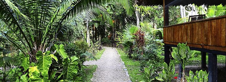 Lodge dans l'Amazonie péruvienne