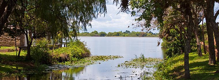 L'estuaire de l'Ibera, paradis de verdure