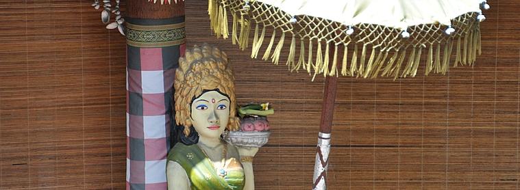Pas de gros risques sanitaires à Bali, mais quelques précautions à prendre.