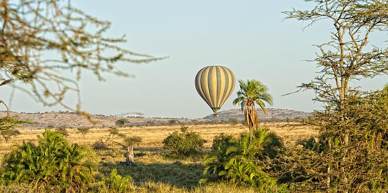 Découvrez les grands espaces Tanzaniens!