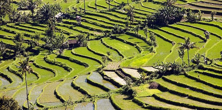 Les paysages pittoresques de l'Indonésie