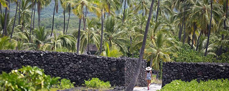 Big Island et Maui