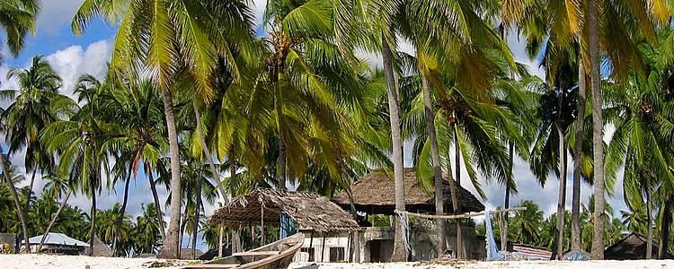 Lo mejor de Kenia, Tanzania y Playas de Zanzibar