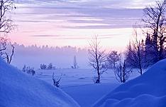 L\'hiver en Laponie suédoise