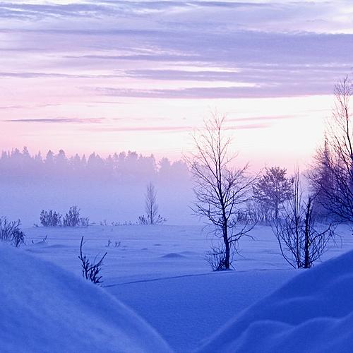 L'hiver en Laponie suédoise - Les Samis -