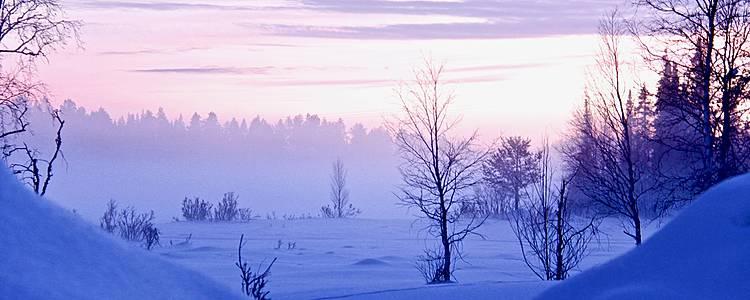 L'hiver en Laponie suédoise