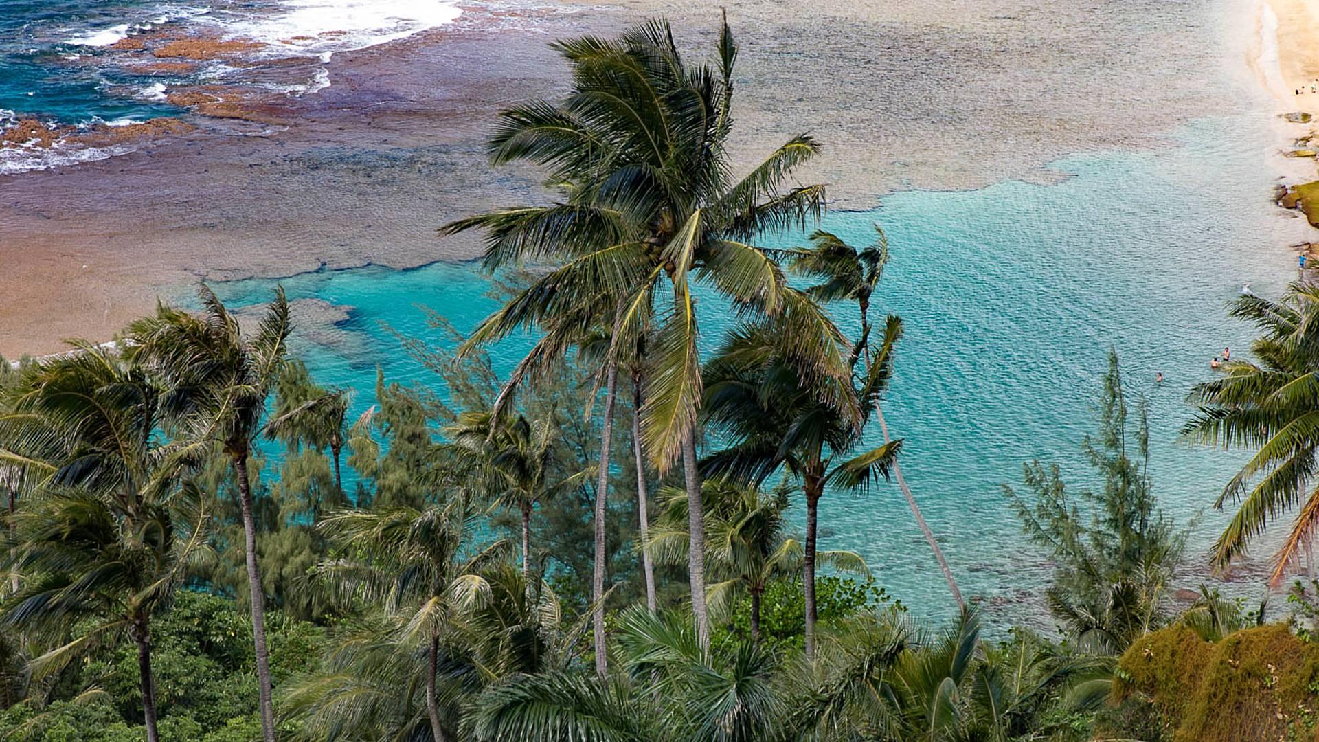 Les quatre îles de l'archipel d'Hawaii