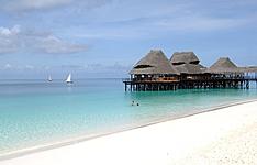 Safari en bivouac et détente à Zanzibar